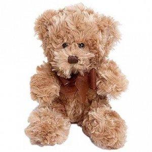 Cuddly Brown Bear