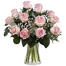 12 Secret Pink Roses Delivery Greece