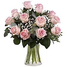 12 Secret Pink Roses Delivery Denmark
