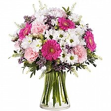Gerberas and Carnations Delivery to Canada