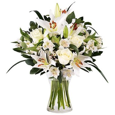 Innocent Love Flowers Delivery to Australia