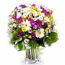 Mixed Crazy Daisies Delivery to Greece