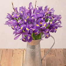 Iris Delight Delivery to UK