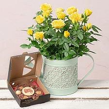 Birthday Rose Gift Delivery to UK [United Kingdom]