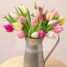 Spring Tulips Delivery to UK