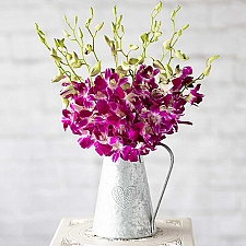 Oriental Orchids delivery to UK [United Kingdom]