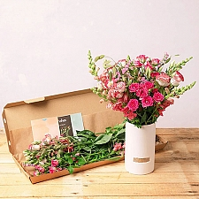 Molly Mae Flowers Delivery UK