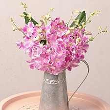 Oriental Orchids Delivery UK
