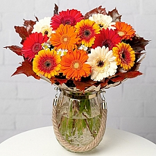 Autumn Daisies by Post delivery to UK [United Kingdom]