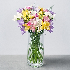 Fragrant Freesias delivery to UK [United Kingdom]