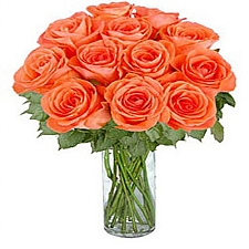 12 Long Stemmed Orange Roses delivery to Canada