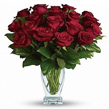 18 Red Long Stem Roses delivery to Canada