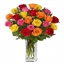 24 Long Stemmed Mixed Roses delivery to Canada