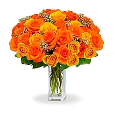 36 Long Stem Orange Roses delivery to Canada