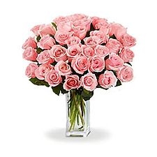 36 Long Stem Pink Roses delivery to Canada