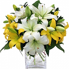 Lilies delivery to Canada