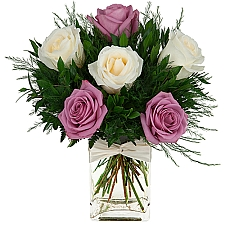 Rose Elegance delivery to Canada