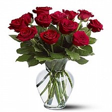 12 Long Stemmed Red Roses delivery to Canada