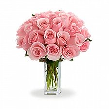 24 Long Stem Pink Roses delivery to Canada
