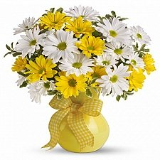 Classic Yellow & White Daisies delivery to Canada