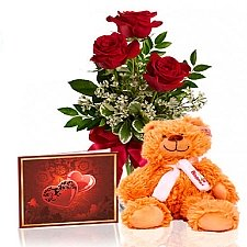 Roses & Teddy Special delivery to Canada