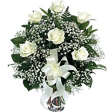 6 White Roses delivery to Canada