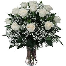 12 White Roses delivery to Canada