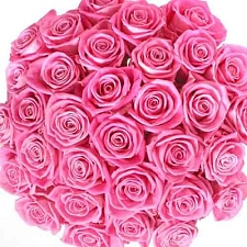 Pink Roses Bouquet 100 Flowers delivery to India