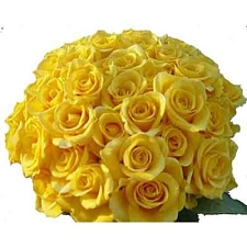 Yellow Roses Bouquet 100 Flowers delivery to India