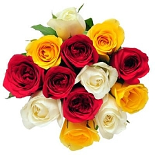 15 Mix Roses Bunch delivery to India