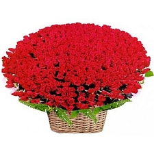 250 Red Roses Basket delivery to India