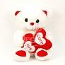 Double Heart I Love You Teddy Bear