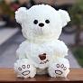 Teddy Bear PK