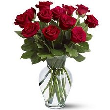 12 Red Roses Delivery to UAE