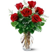 6 Red Roses Delivery to UAE