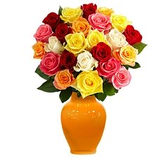 Two Dozen Multicolored Roses Delivery to UAE