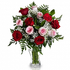12 Red and Pink Roses Delivery UK