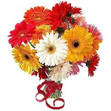 Gerbera Daisies Bouquet delivery to Kuwait