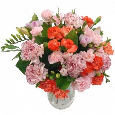 Freesia and Carnation Delivery to UK