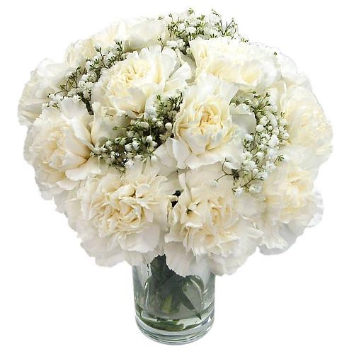 White Spray Carnations delivery to UK [United Kingdom]