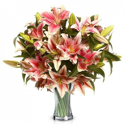 Blush Lilies Delivery UK