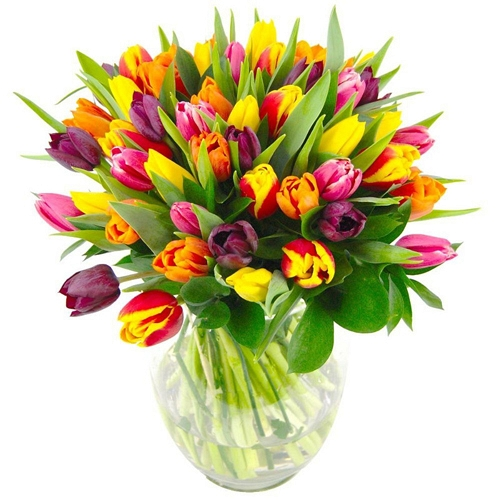 Mixed Tulips Bouquet delivery UK