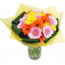 Gerbera Sunshine delivery to UK [United Kingdom]