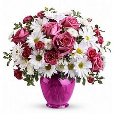 Darling Rose Delight