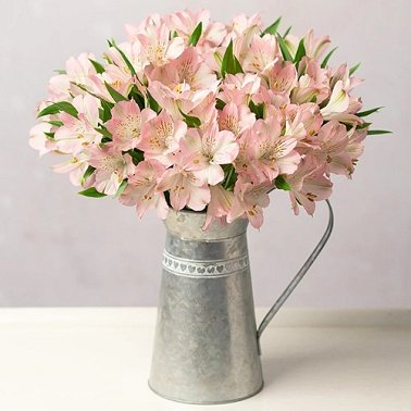 Simply Alstroemeria by Post delivery to UK [United Kingdom]