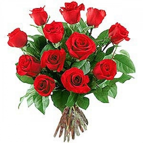 12 long stem roses send flowers to usa expressgiftservice