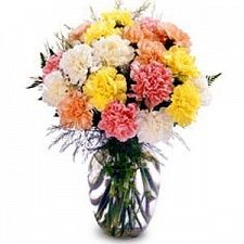 Dozen Carnations in Vase delivery to Qatar